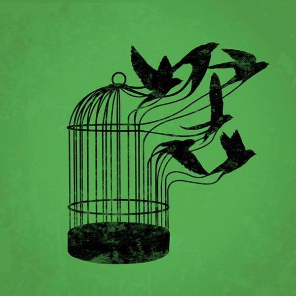 libertad-prision-jaula