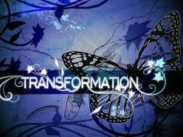 Transformation: Methamorphosis / Transformación: Metamorfosis